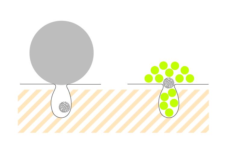 クレイ粒子は泥粒子の約1/16と超微粒子化粧品のファンデーションとほぼ同じ大きさ
